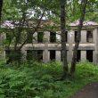 Ruiny Treadwell